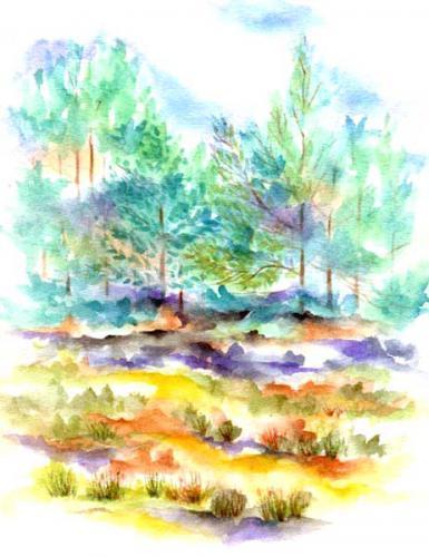 Forêt Ermenonville