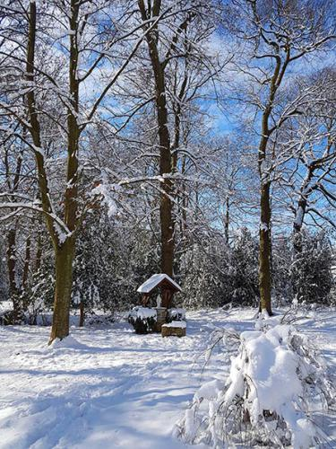 St Marie sous neige Sœurs du Cénacle